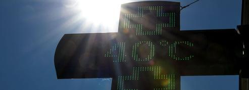 Canicule: comment les travailleurs exposés font face aux fortes chaleurs