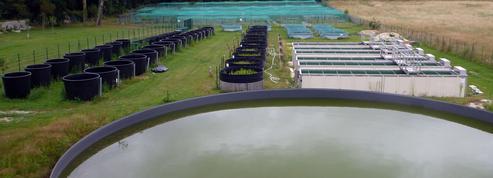 L'Écotron, une vaste plateforme novatrice d'écologie expérimentale