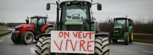 Pourquoi un agriculteur se suicide-t-il tous les deux jours en France ?