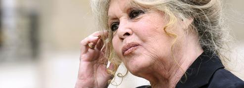 Brigitte Bardot : «Macron devrait prendre exemple sur Hulot»