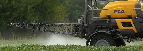 Brésil : un tribunal annule la suspension du glyphosate
