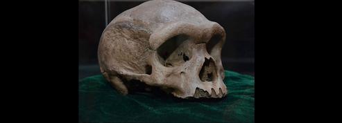 Un incroyable crâne vieux de 200.000 ans cachés depuis 85 ans dans un puits en Chine