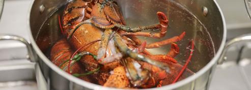 États-Unis : un restaurant enfume ses homards au cannabis avant de les cuir