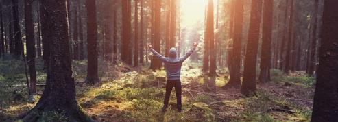 Psychologie : l'importance de développer son écologie intérieure