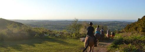Balades automnales: les mules en tête