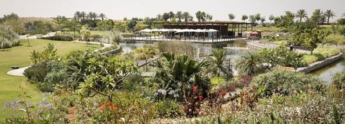 Israël, sur la piste de l'écotourisme