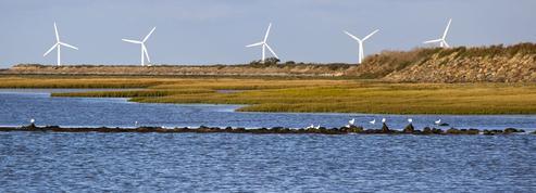 Le renouvelable met la pression sur les pouvoirs publics