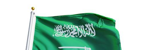 Francophonie : l'Arabie saoudite frappe à la porte de l'organisation