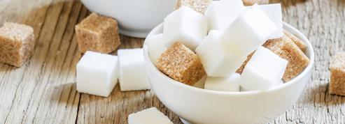 L'Europe condamnée à moins exporter de sucre?