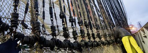 L'Europe va-t-elle autoriser la pêche électrique?