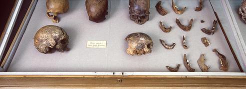 L'ADN de momies multimillénaires éclaire la conquête des Amériques