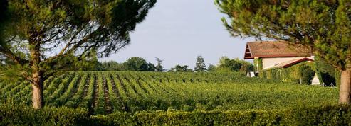 Pourquoi Trump n'a pas tort lorsqu'il dénonce les taxes sur les importations de vin américain