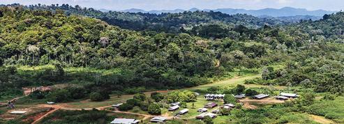 Le projet de mine d'or en Guyane est revu et corrigé