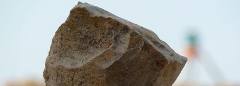 Une «boucherie» préhistorique vieille de deux millions d'années en Algérie