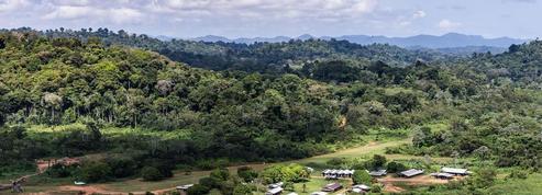 Guyane: guerre ouverte pour la Montagne d'or