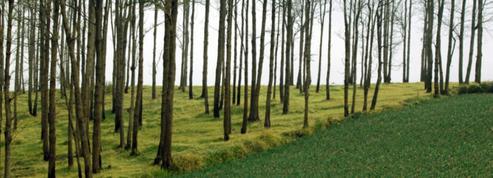Le rôle des terres minoré pour lutter contre le réchauffement climatique