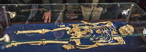 Little Foot, la plus belle australopithèque