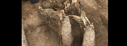 Des chevaux de plus de 2000 ans, enterrés debout dans le Yorkshire