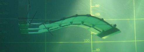 Eel Energy, une hydrolienne à placer dans les fleuves et rivières