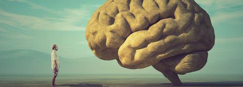 Sciences sociales, sciences naturelles : l'impossible dialogue ?