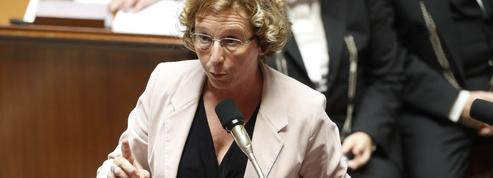 «Gilets jaunes» : l'intense marathon parlementaire prend fin