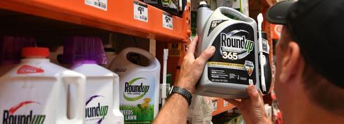 Le glyphosate disparaît des jardins, mais pas des champs