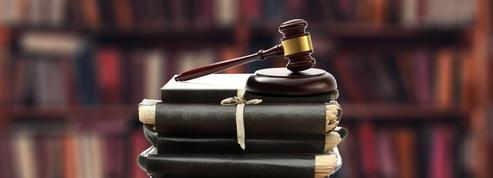 «Irrépétible», «ultra petita»: la justice administrative dépoussière son vocabulaire