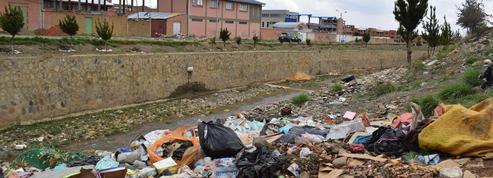 En Bolivie, le lac Titicaca étouffe sous la pollution