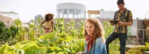 L'agriculture urbaine, un secteur et des métiers «tendances»