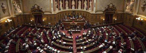 À quoi sert le Sénat, contre-pouvoir revigoré par l'affaire Benalla?