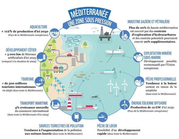 Infographie réalisée par WWF.