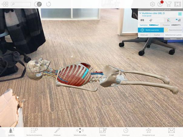 Human Anatomy Atlas 2018 permet de visualiser l'anatomie dans n'importe quel environnement.