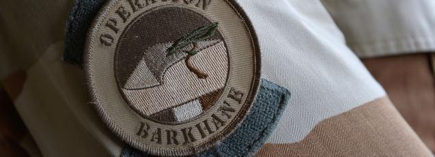 L'opération antiterroriste «Barkhane» conduite par la France, s'étend sur cinq pays du Sahel: la Mauritanie, le Mali, le Tchad, le Burkina Faso et le Niger..