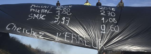 Des agriculteurs déploient une banderole contre les prix bas du lait et du porc, le 28 janvier sur l'autoroute A84, en Bretagne.