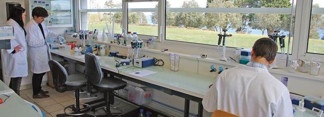 Un laboratoire de l'Ifremer.