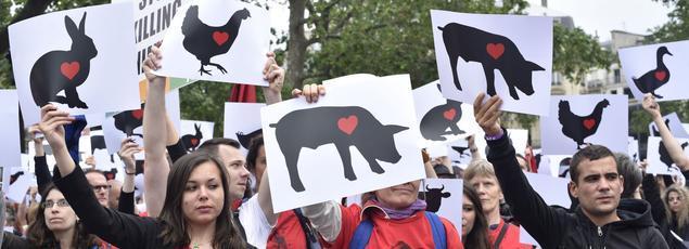 Manifestation contre l'exploitation animale et pour la fermeture des abattoirs, en avril dernier à Paris.