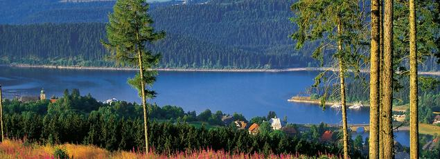 Le Schluchsee, le plus vaste lac de Forêt-Noire.