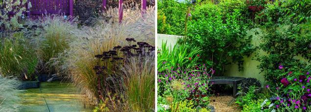 A gauche: composition créée par Jacqueline Van der Kloet mêlant graminées du genre Pennisetum et Sedum 'Matrona». A droite: dans ce minuscule jardin londonien, la profusion des plantes crée l'illusion d'un espace beaucoup plus grand.