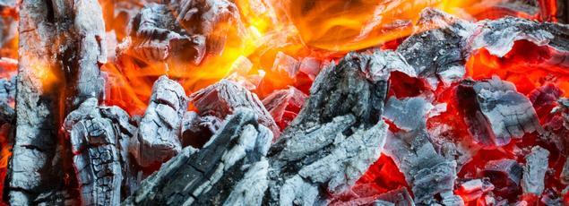 La cendre de bois est riche en éléments minéraux dont les plantes se nourrissent.