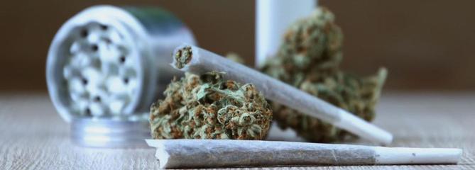 Cannabis : un rapport propose d'assouplir les peines