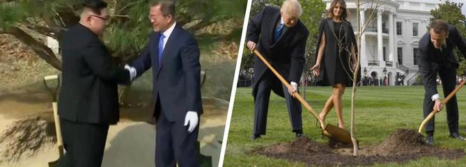 Mais pourquoi les hommes politiques plantent-ils des arbres ?
