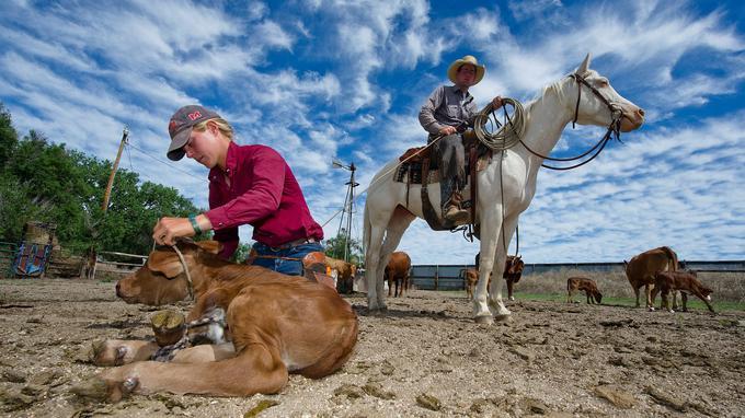 Samantha, en apprentissage à Chico pour une durée de deux ans, se destine au métier de contremaître ou de ranch manager.