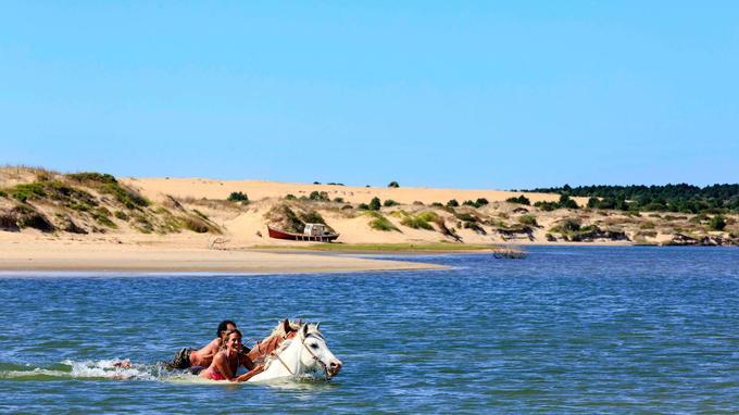 Entre Barra de Valizas et Cabo Polonio, les balades à cheval réservent d'incroyables surprises et procurent d'indélébiles souvenirs.