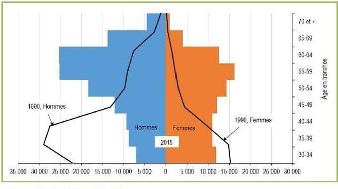 Pyramide des âges des médecins français de 1990 à 2015