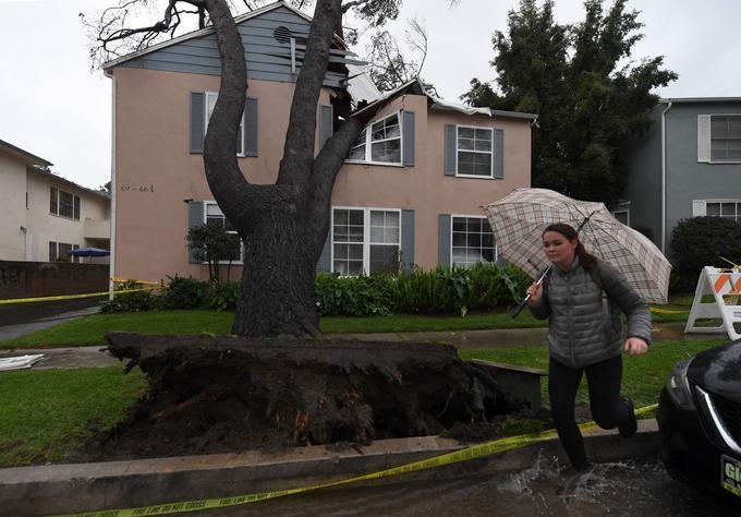 Les résidents quittent leur maison après qu'un arbre déraciné se soit écrasé dessus, à Los Angeles.