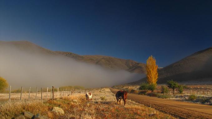 Un paysage typique de la Patagonie. © Argentina excepcion