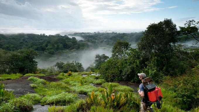 Seul au monde au lever du jour sur l'inselberg (petit massif) Memora dans le bassin de l'Oyapock. (Guillaume Feuillet / Parc amazonien de Guyane)