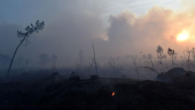 Au total, 900 hectares sont partis en fumée depuis jeudi après-midi.