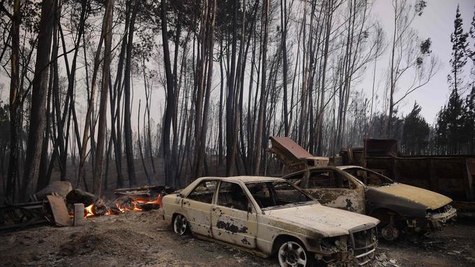 Selon les autorités, une grande partie des victimes ont péri dans leurs voitures, piégées par les flammes alors qu'elles circulaient samedi sur la nationale 236 reliant Figueiro dos Vinhos à Castanheira de Pera.