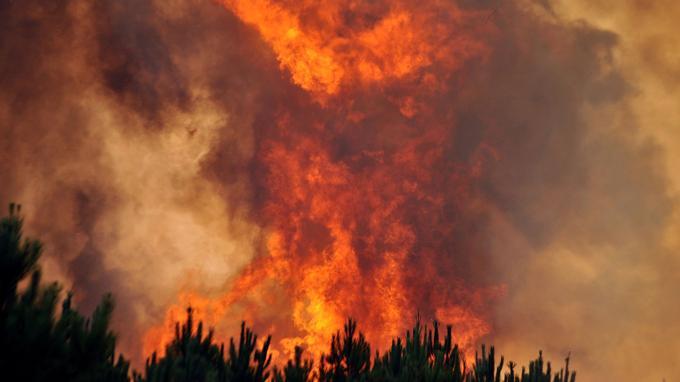 Incendie près de Lacanau. <i>PIERRE ANDRIEU / AFP</i>